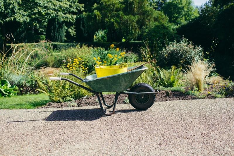 Wheelbarrow with plants in the botanical garden