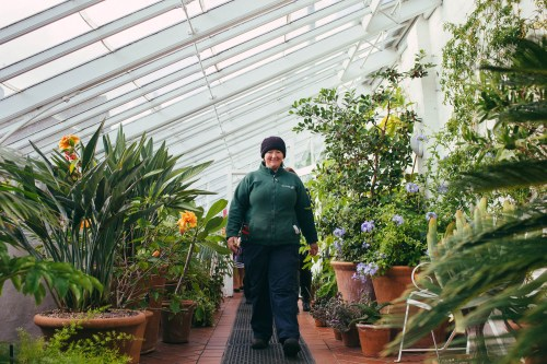 A member of Winterbourne staff showing a group through the glasshouse