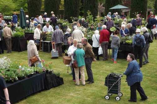 The Rare Plant Fair at Winterbourne Botanic Garden