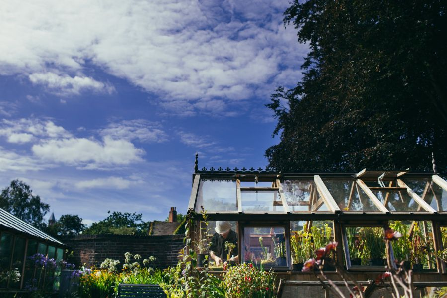 Carnivorous House, photograph by Greg Milner, photography, Winterbourne House and Garden, Digging for Dirt
