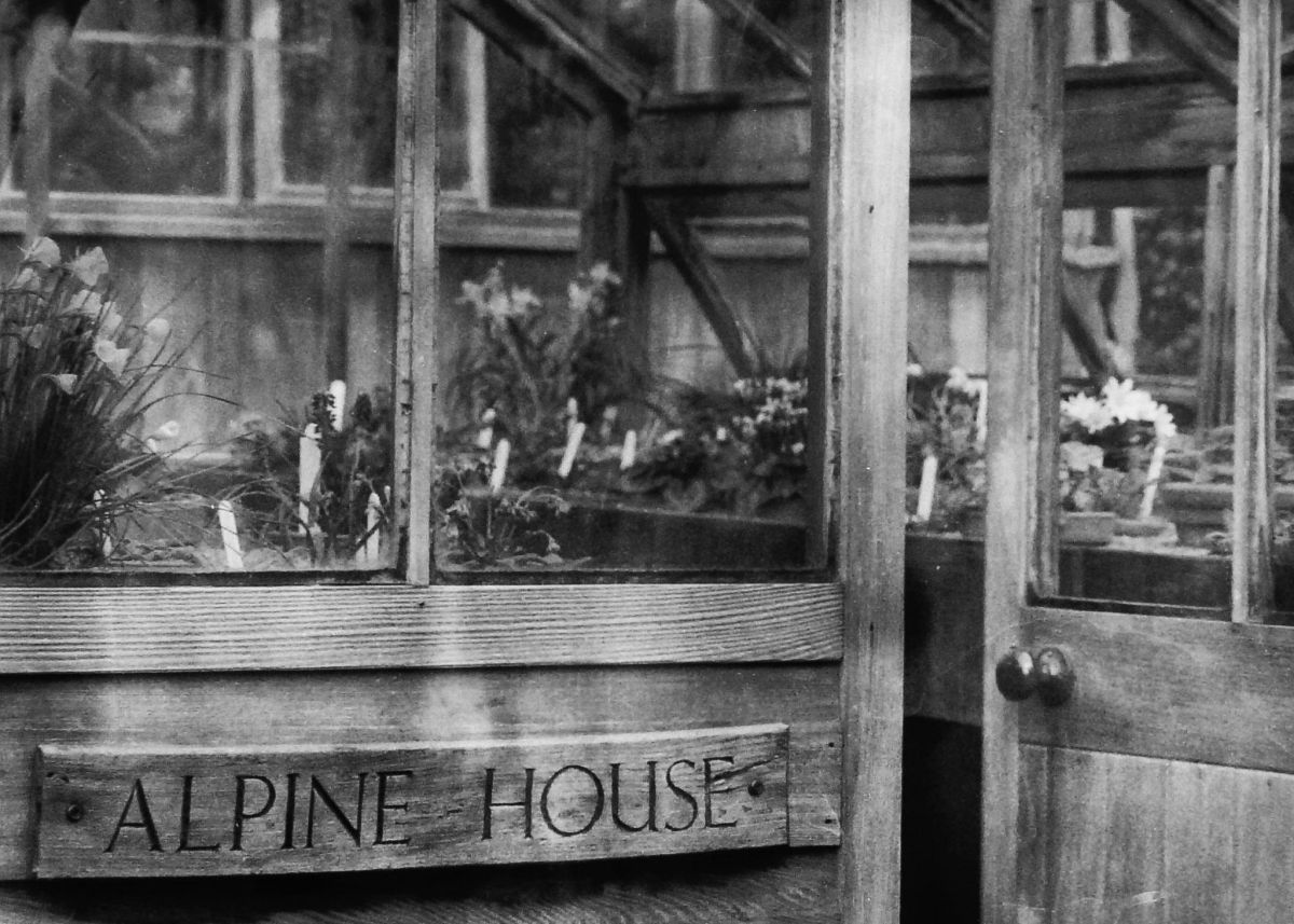 The Alpine House, photograph by Chris Rigby, film photography, Winterbourne House and Garden, Digging for Dirt