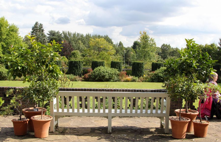 The Terrace, photograph by Alice Whitehouse, Digging for Dirt, Winterbourne House and Garden