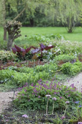 The Stream Border, April 2012, photograph by Jenny Lilly, Winterbourne House and Garden, Digging for Dirt