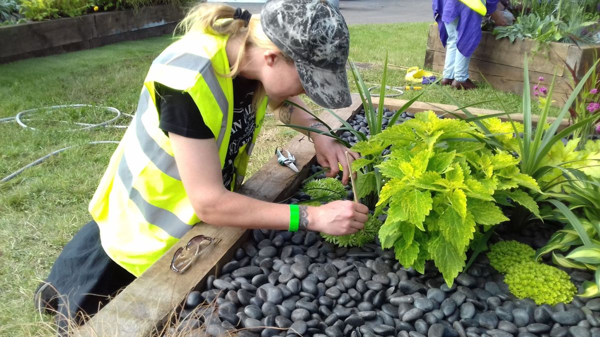 Applying the finishing touches, Cath Fletcher, Winterbourne House and Garden, Digging for Dirt