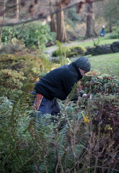 Huw in the Sandstone Rock Garden, photography by Maggie Bucknall, The Week That Was, Winterbourne House and Garden, Digging for Dirt