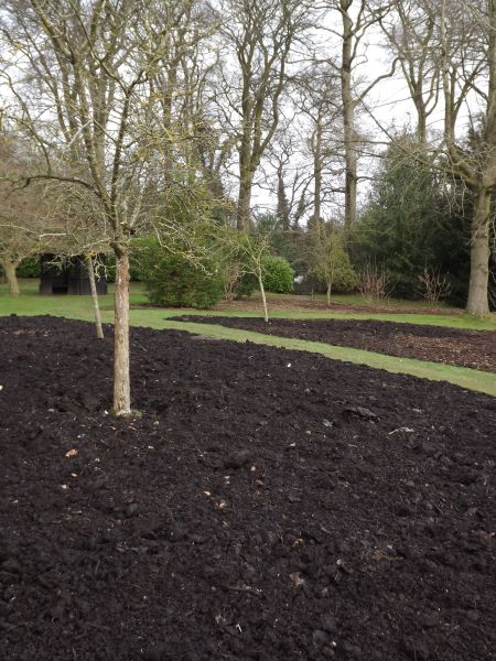 Newly composted borders on the Arboretum Lawn, The Week That Was, Winterbourne House and Garden, Digging for Dirt