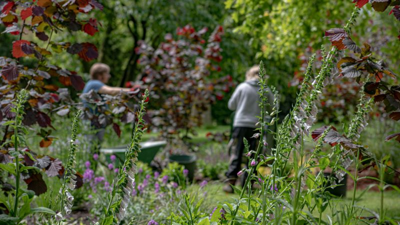 Meryl and Mike mulching the new Arboretum Lawn Borders, photograph by Maggie Bucknall, The Week That Was, Digging for Dirt, Winterbourne House and Garden