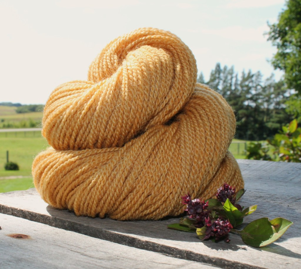 Summer – New Yarn