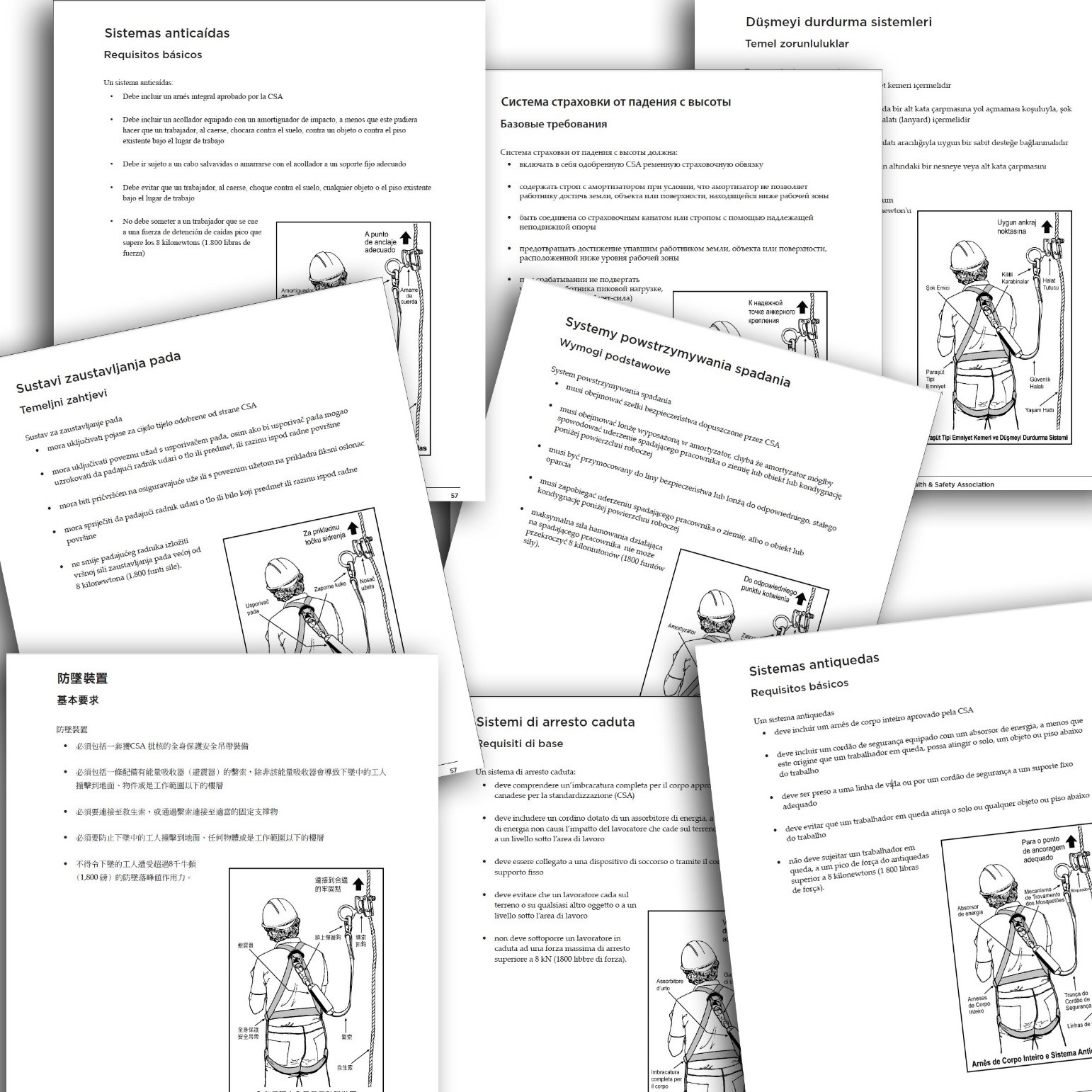 Case Study: Translation and DTP of Health & Safety Manual