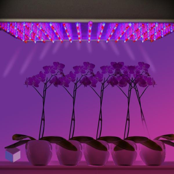 Lampara de led para cultivar plantas por 3518 por ebay y