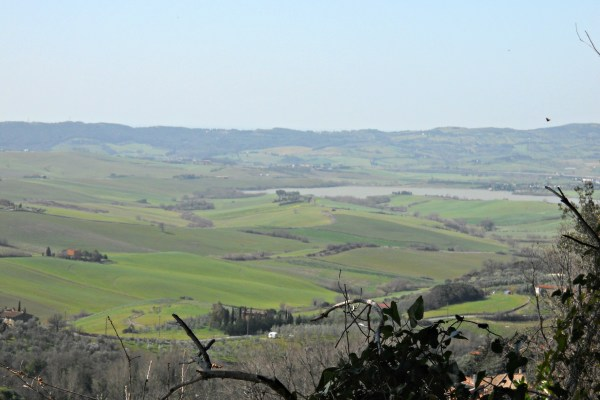 Biodiversità e Toscana – Pianeta Terra