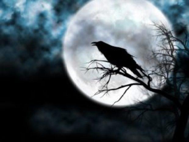 paradosso dei corvi