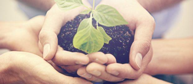 SI all'ecosostenibilità: un mondo più consapevole