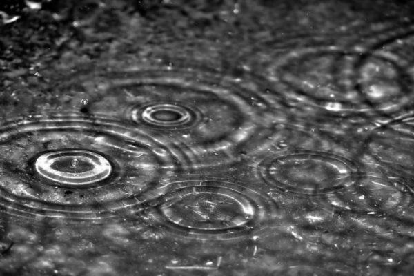 Chi dice che il sole porta la felicità non ha mai ballato sotto la pioggia.