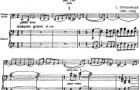 Sonata in do maggiore per violoncello e pianoforte op. 119 di S. Prokofiev