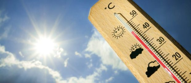 Come affrontare un'estate caldissima!