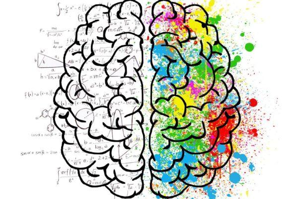 La potenza dell'arte sul cervello
