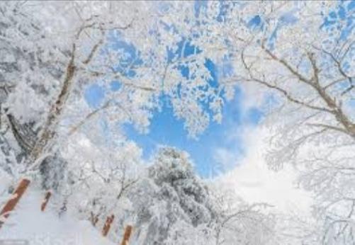"""""""Scende la neve scende!"""""""