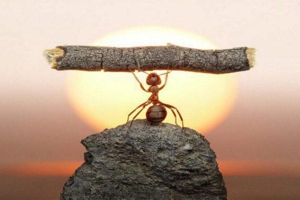 La determinazione per mantenere i buoni propositi