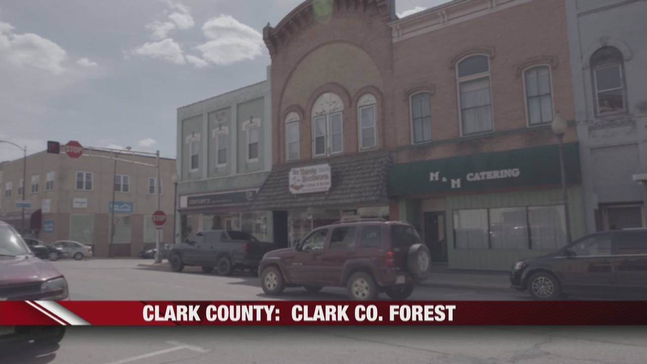 Clark_county__Clark_co__forest_0_20190601021931