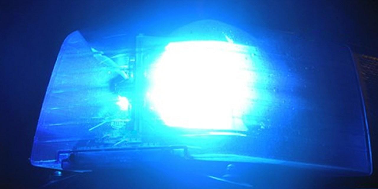 Dumm-dreister Dieb in Ingelheim auf frischer Tat ertappt