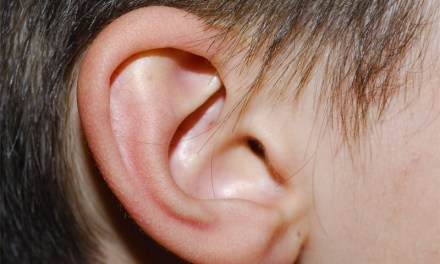 Fastnachter beißt einem anderem Narren Ohr ab