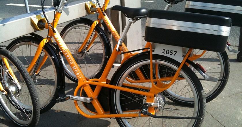 Belohnung für Hinweise auf die Fahrrad-Vandalen