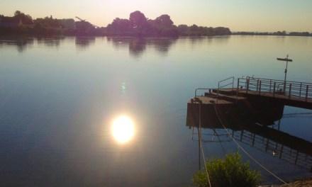 Traurige Gewissheit – Der seit Samstag bei Nackenheim im Rhein vermisste Junge ist tot