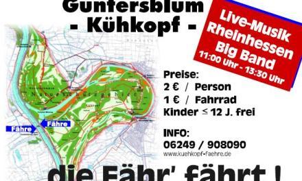 Kühkopf-Fähre: Guntersblum ist aus dem Schneider – die VG muss zahlen!!