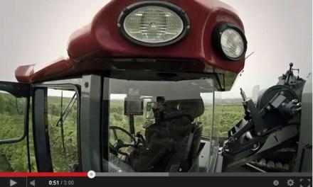 Rheinhessen erntet – der Film