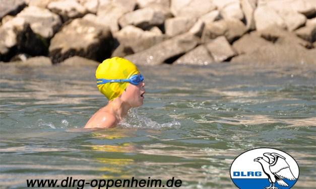 Jedermannschwimmen der DLRG Oppenheim am 24. August