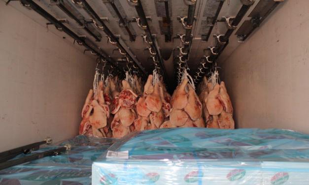 Fleischtransport – Was für eine riesige Schweinerei!