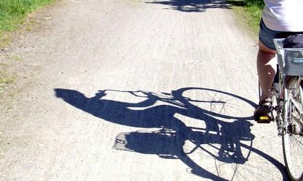 Fahrräder in Nierstein gestohlen