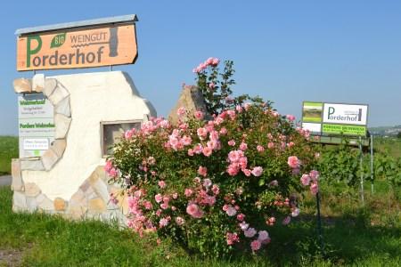 weingut-porderhof-2016