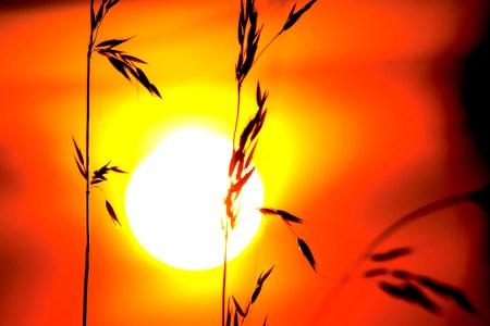 Die Sonne kann blenden. (Bild: stock xchng)