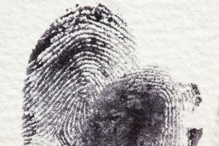 Fingerabdrücke führten zur Identifizierung. (Foto: Polizei Mainz)