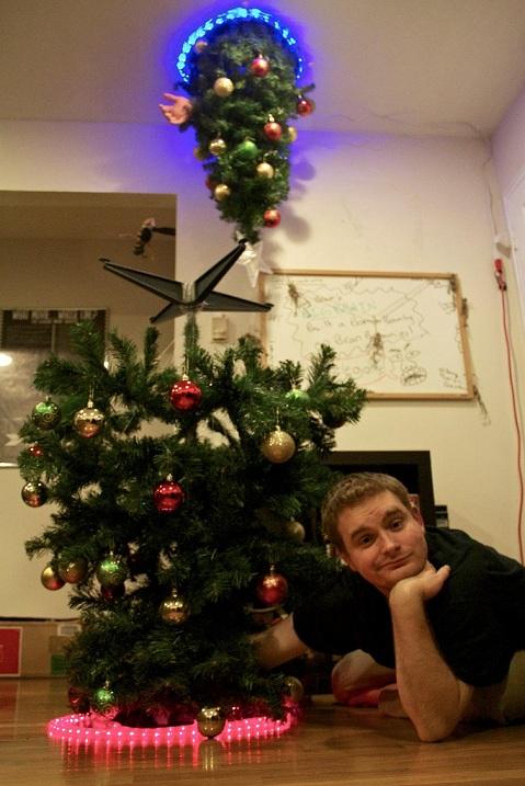 portal_tree_2_smaller