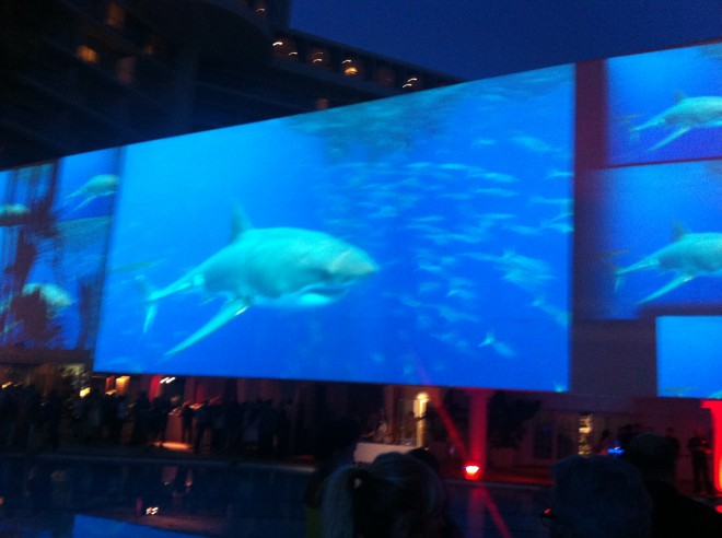 Discovery's Shark Week party