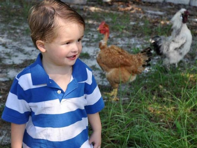 "J.J Hart and his ""ducks""  Image Save JJ Harts Ducks Facebook Page"