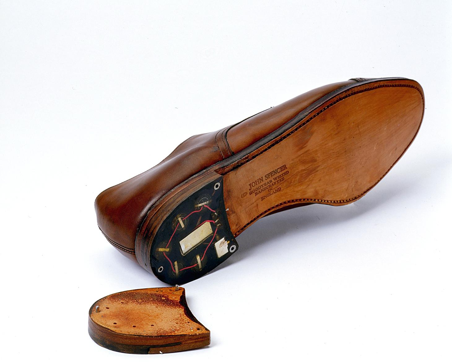 Shoe Bug