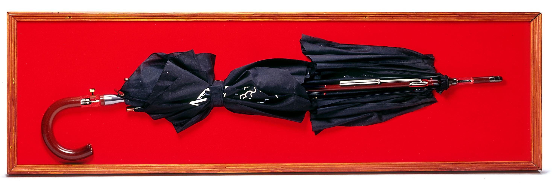 Spy Umbrella