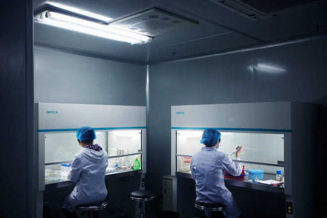 A Chinese Genome Giant Sets Its Sights on the UItimate Sequencer