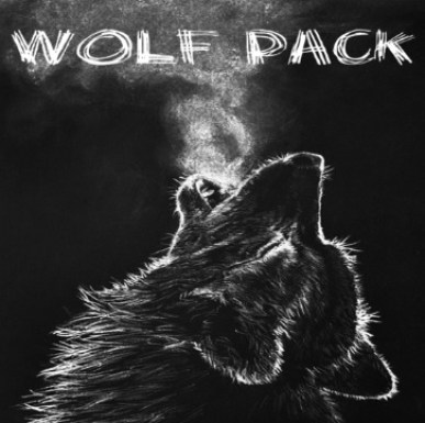 Image result for Wolf Pack kodi addon