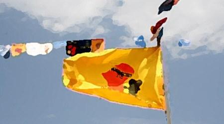 Bandera del FESPACO.