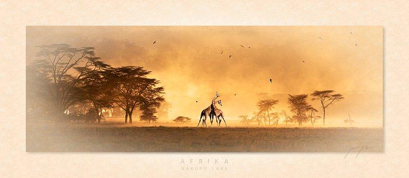 Afrika. Foto: Marina Cano