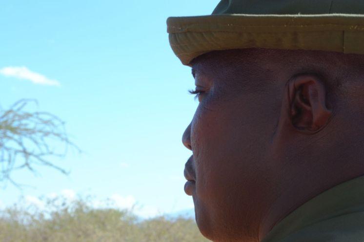 Seremon, Parque Tsavo (Kenia). Foto: Ruth Fernández Sanabria / Wiriko.