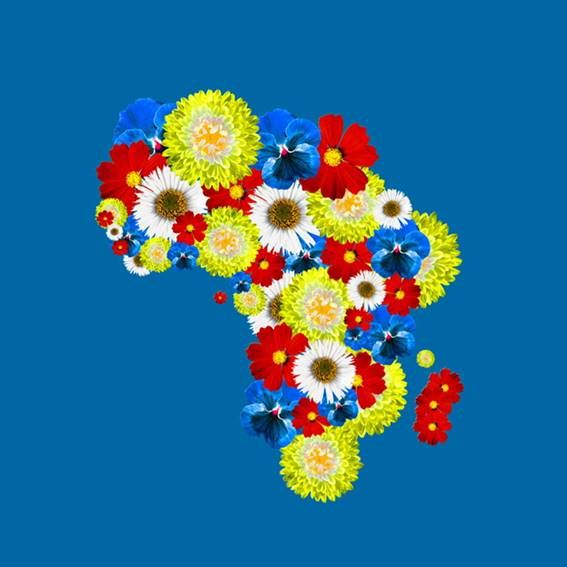 Afrika Floral en primaris III, collage digital de Montserrat Anguiano y Ruben Antón.