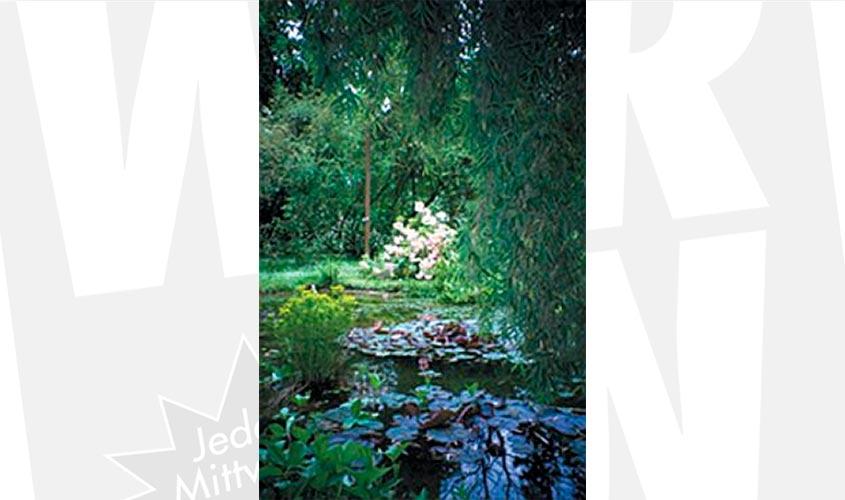 Naturerlebnispark Und Naturdenkmal Dörenthe