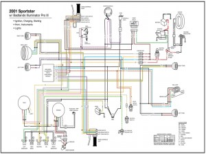 Wiring Diagram 97 Sportster Turn Signal Relay  Wiring Forums