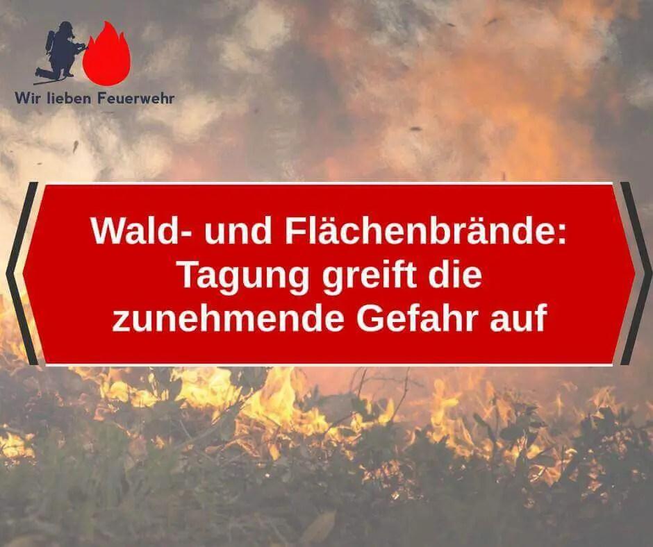 Wald- und Flächenbrände: Tagung greift die zunehmende Gefahr auf